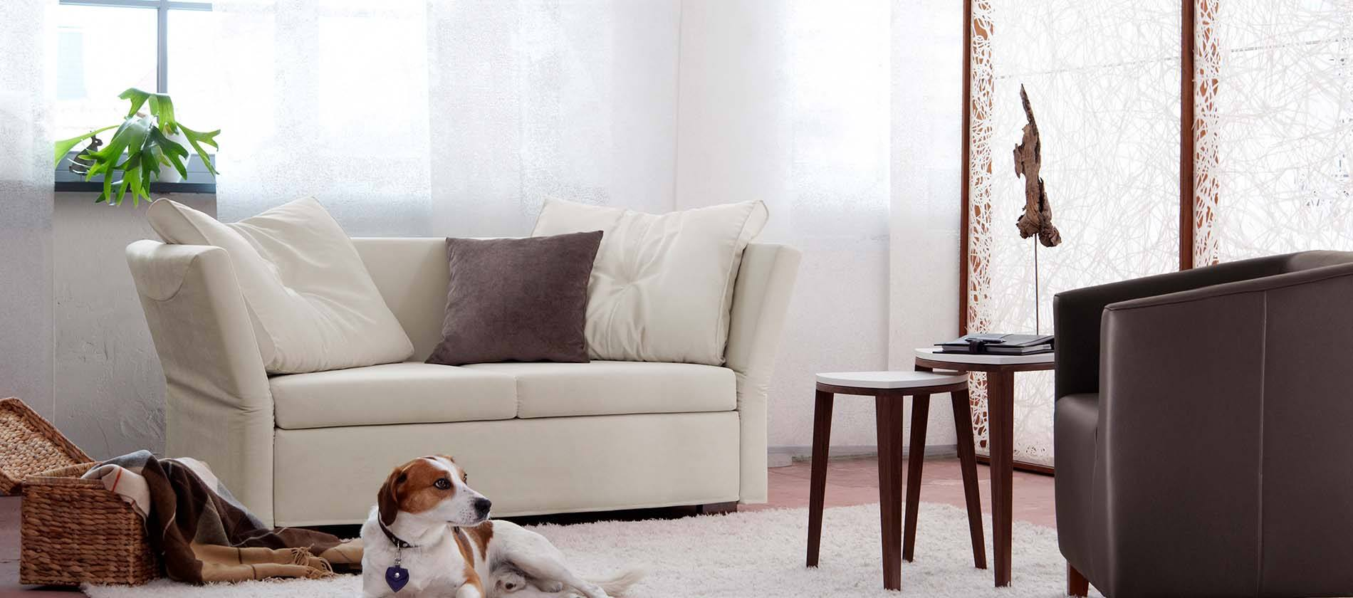 schlafsofa lavin von signet jetzt mehr erfahren. Black Bedroom Furniture Sets. Home Design Ideas